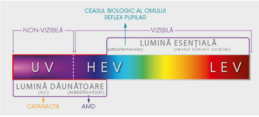 ceas biologic al omului